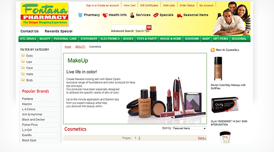 jamaica website design